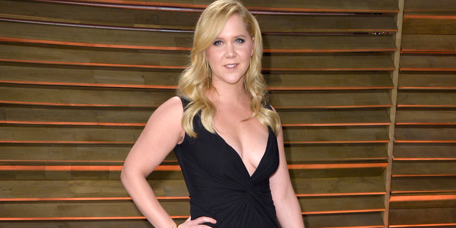 hot fake nude pics of amy schumer
