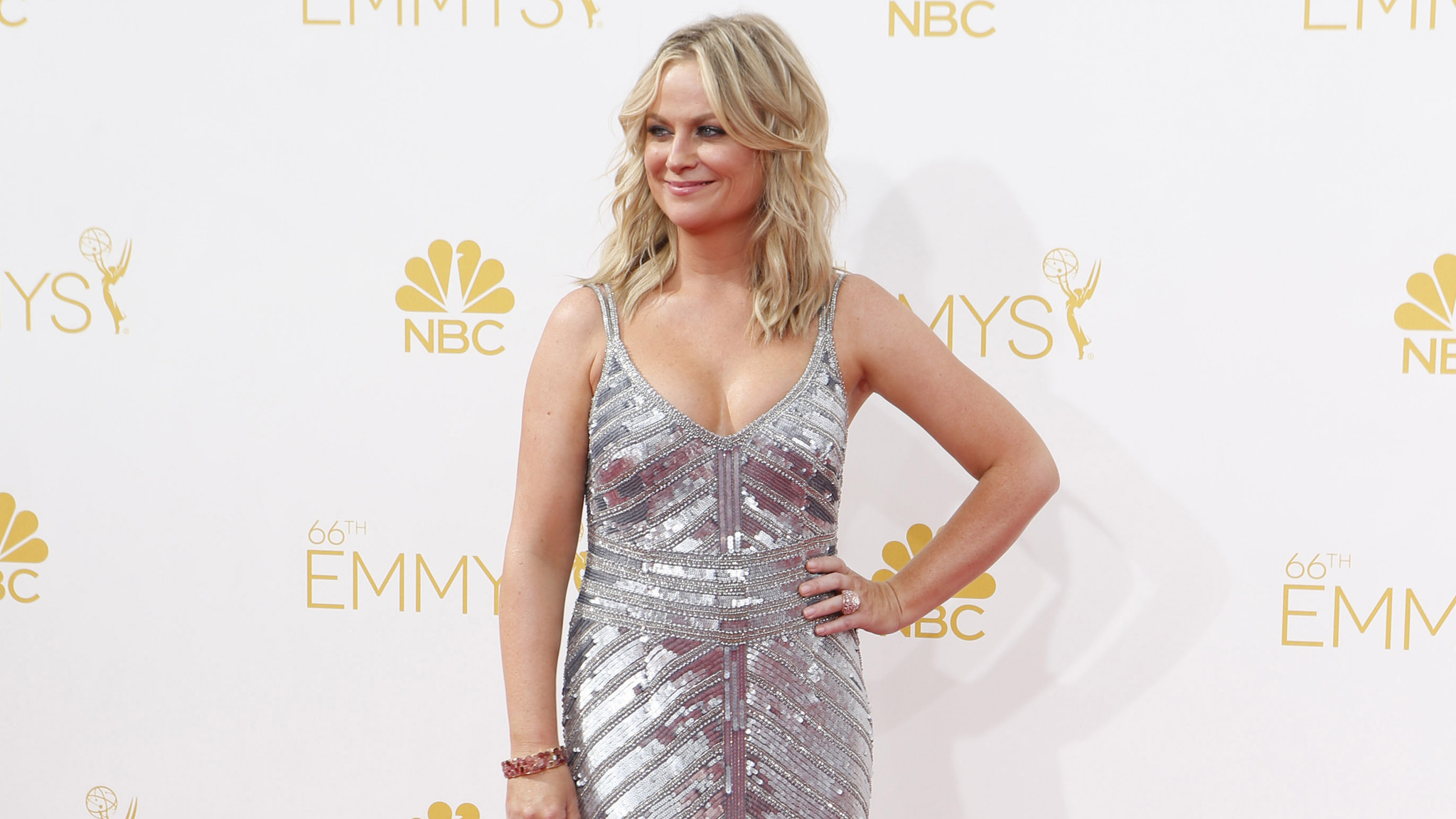 Amy Poehler Hot