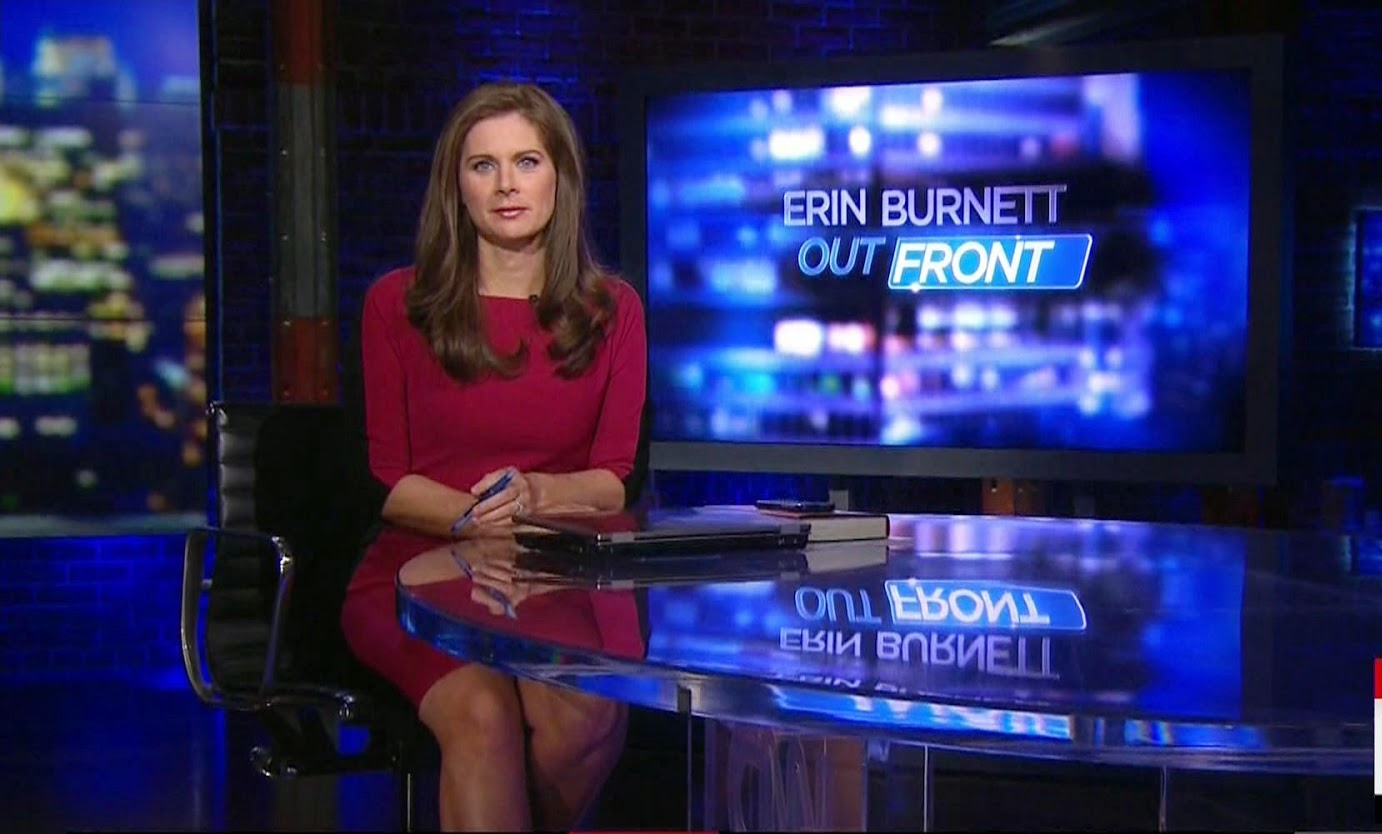 Erin Burnett Hot Bikini Pics, News Host Kissing Scene 8