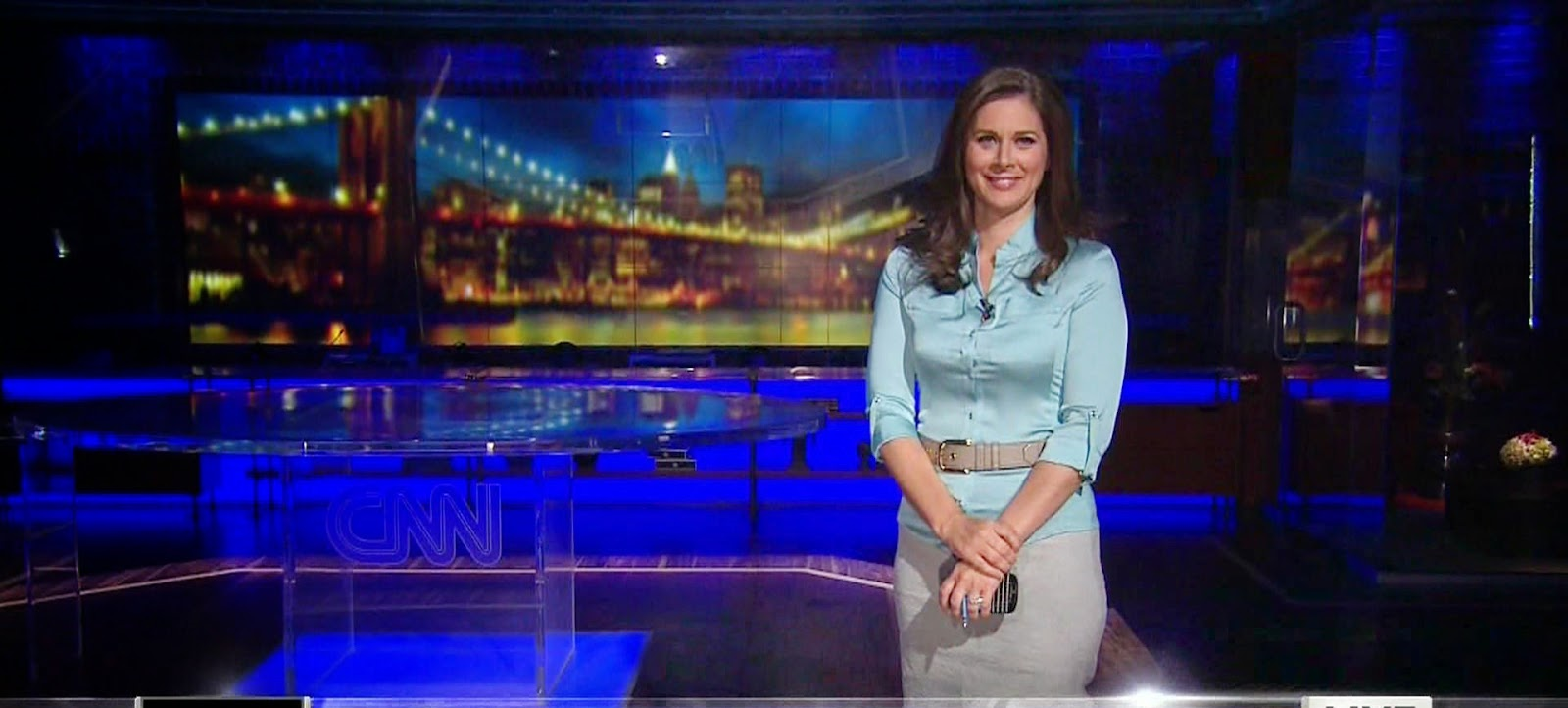 Erin Burnett Hot Bikini Pics, News Host Kissing Scene 9