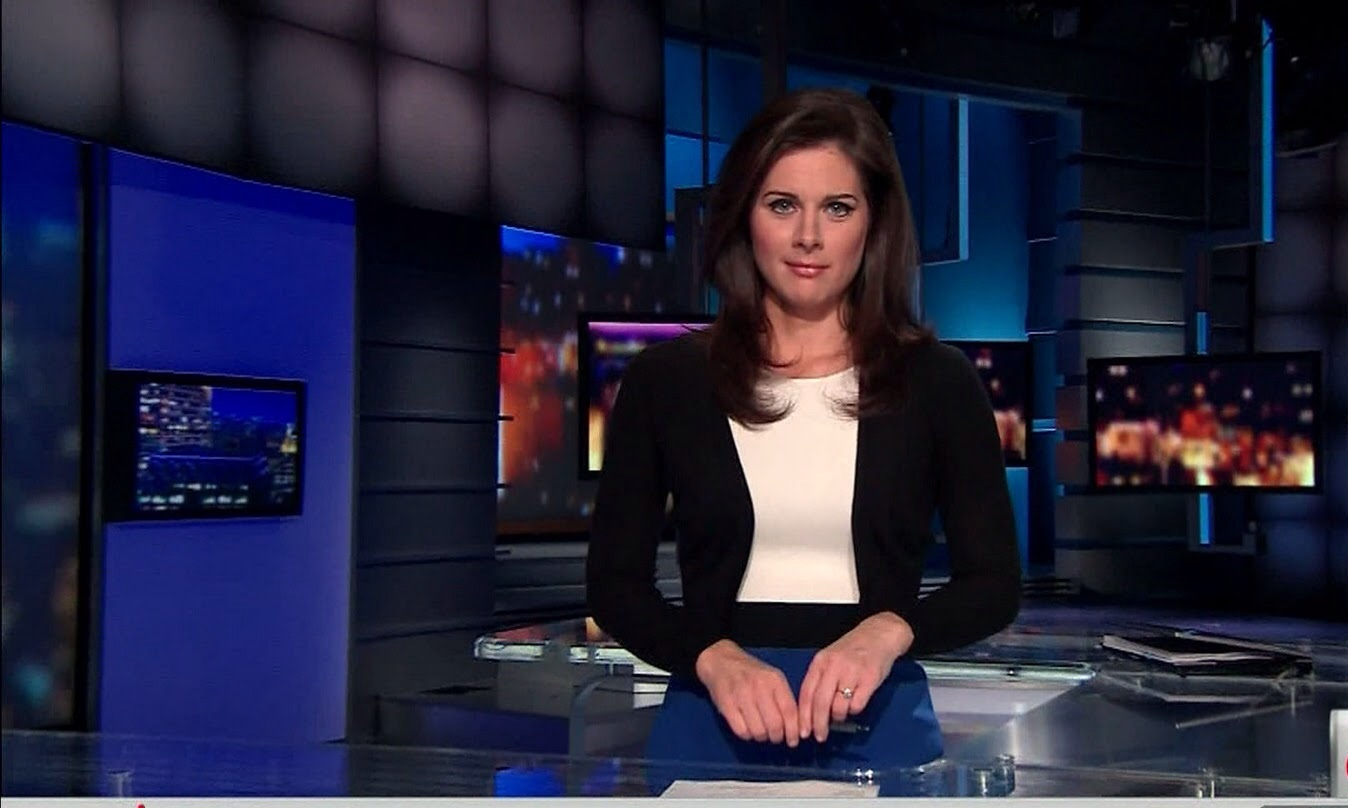 Erin Burnett Hot Bikini Pics, News Host Kissing Scene 10