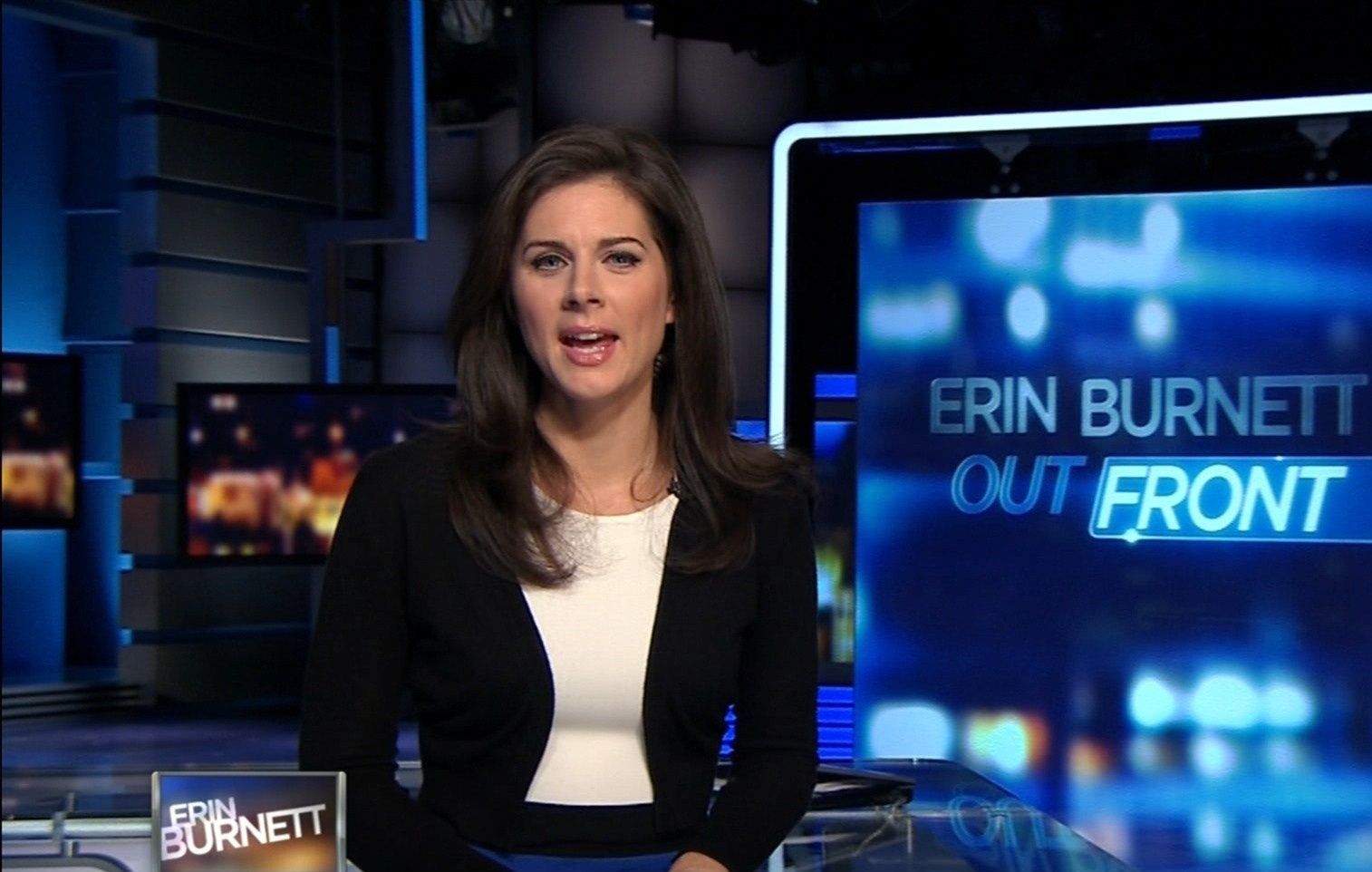 Erin Burnett Hot Bikini Pics, News Host Kissing Scene 18
