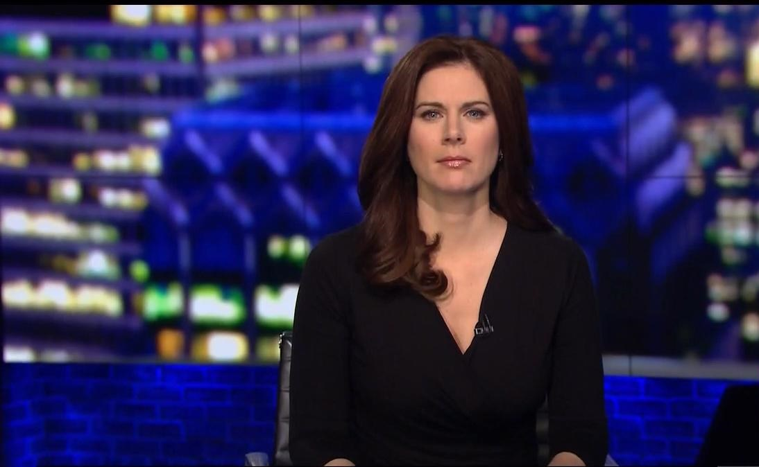 Erin Burnett Hot Bikini Pics, News Host Kissing Scene 24