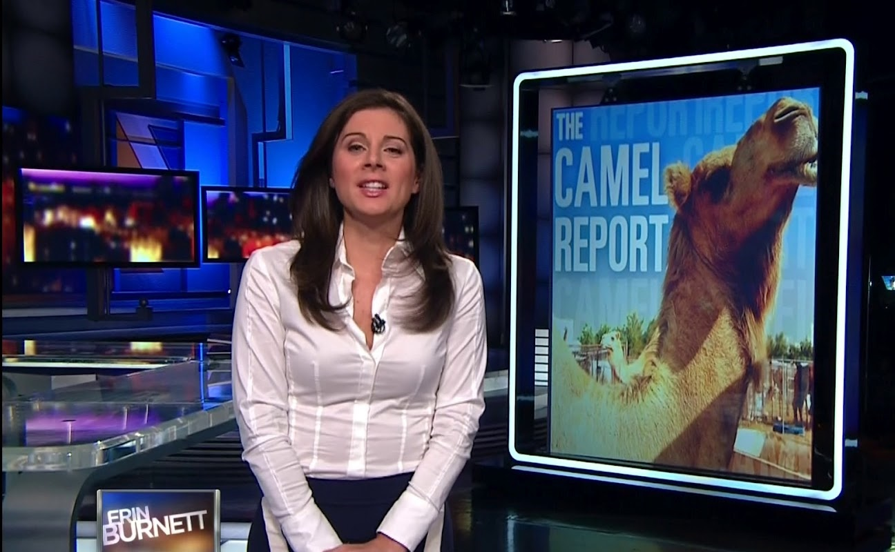 Erin Burnett Hot Bikini Pics, News Host Kissing Scene 27