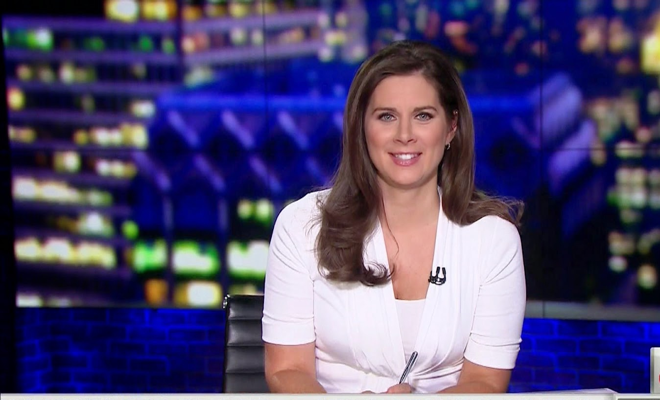 Erin Burnett Hot Bikini Pics, News Host Kissing Scene 28